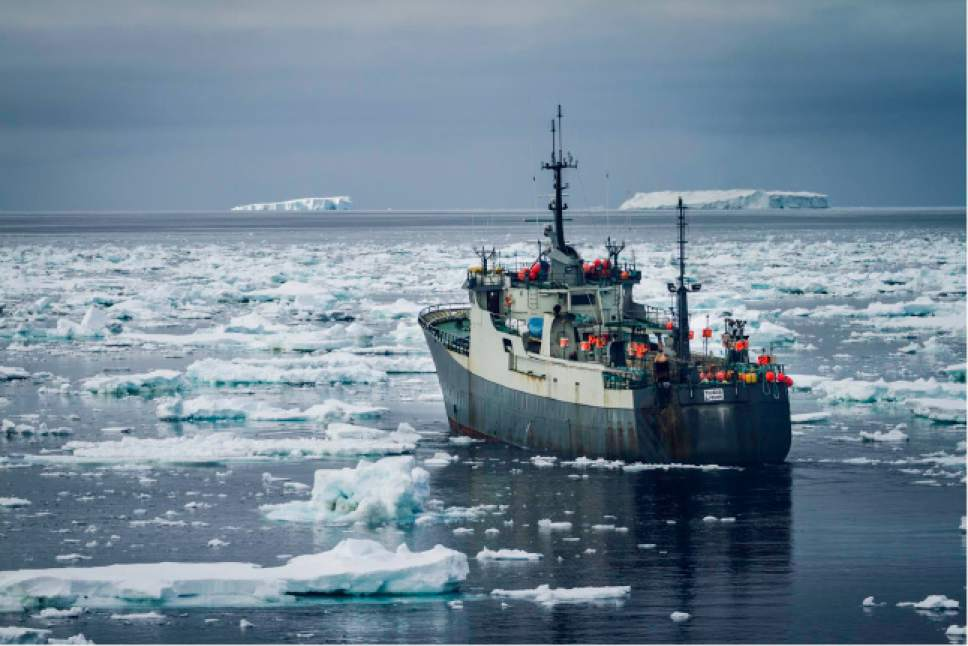 "|  Animal Planet  A ship carrying poachers tries to escape through an Antarctic ice field in ""Ocean Warriors."""