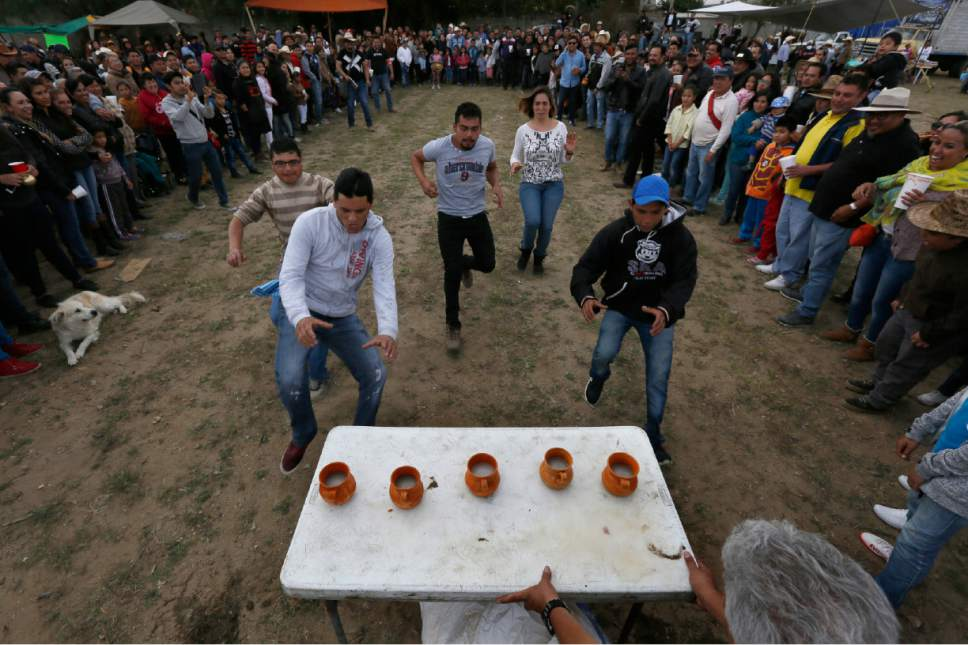 In this Nov. 20, 2016 photo, participants race to a table in a pulque-drinking competition, during a pulque caravan in Santiago Cuautlalpan, Mexico. Pulque fanatics including farmers, growers and urban residents for the last three years have organized the caravan that include food, horseback riding, music, and burros laden with wooden barrels of the beverage. (AP Photo/Marco Ugarte)