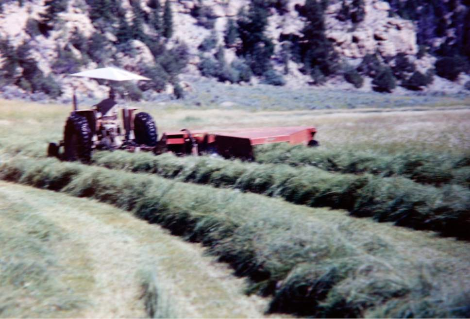 photo courtesy of Bert DeLambert Tractor cuts a healthy crop of alfalfa at Bert and Christine DeLambert's cattle ranch in Main Canyon in Uintah County several years ago.  The valley where he ranches was always wet and productive. Photo was taken before U.S. Oil Sands drilled exploratory holes and water wells for the PR Spring tar sands mine.   His springs have gone dry in the years since then and he gets very little alfalfa for his cattle.  The DeLambert's unsucessfully tried to block a water rights transfer to U.S. Oil Sands that would allow them to pump more groundwater.