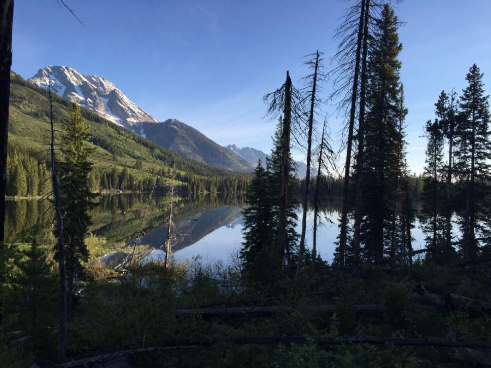 Mountains reflect in String Lake June 4, 2015, in Grand Teton National Park, Wyoming.  The park offers amazing scenery and hiking opportunities without the crowds of nearby Yellowstone National Park. (Erin Madison/Great Falls Tribune via AP)  MANDATORY CREDIT