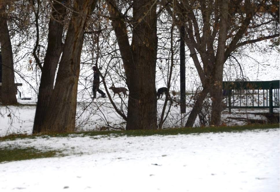 Scott Sommerdorf   |  The Salt Lake Tribune   People walk their dogs in Sugar House Park, Wednesday, December 21, 2016.