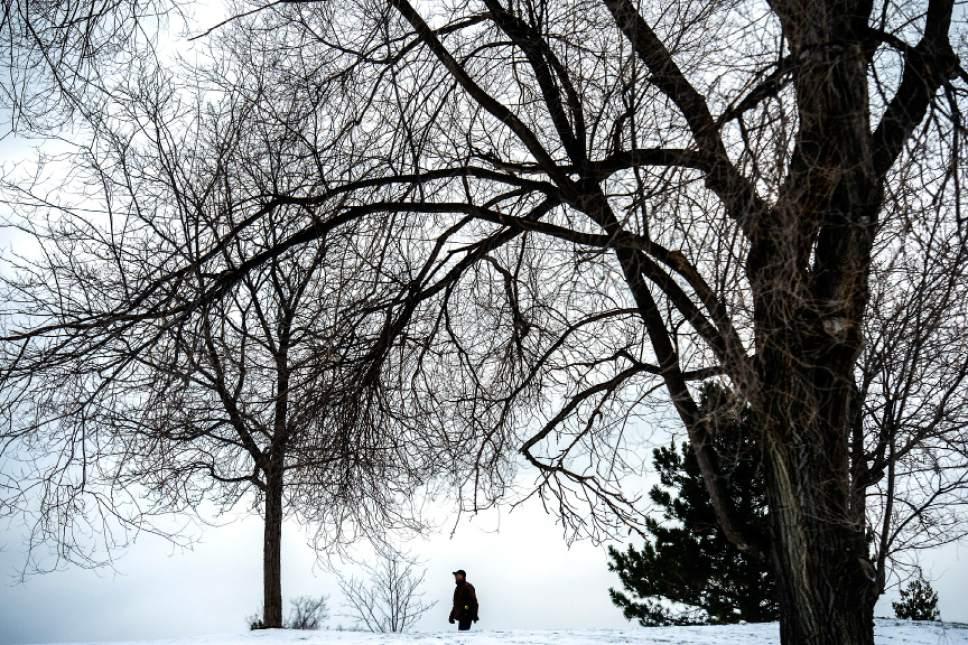 Chris Detrick  |  The Salt Lake Tribune A man walks around Sugar House Park Wednesday December 21, 2016.