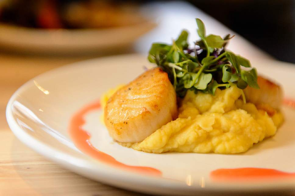 Trent Nelson  |  The Salt Lake Tribune Htenia (seared scallops, yellow split pea puree, micro greens, citrus-ouzo vinaigrette) at Manoli's, a new Greek restaurant in Salt Lake City specializing in small plates.