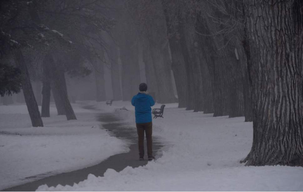 Al Hartmann  |  The Salt Lake Tribune                  Man stops to take a picure of the foggy landscape in Liberty Park on Friday.