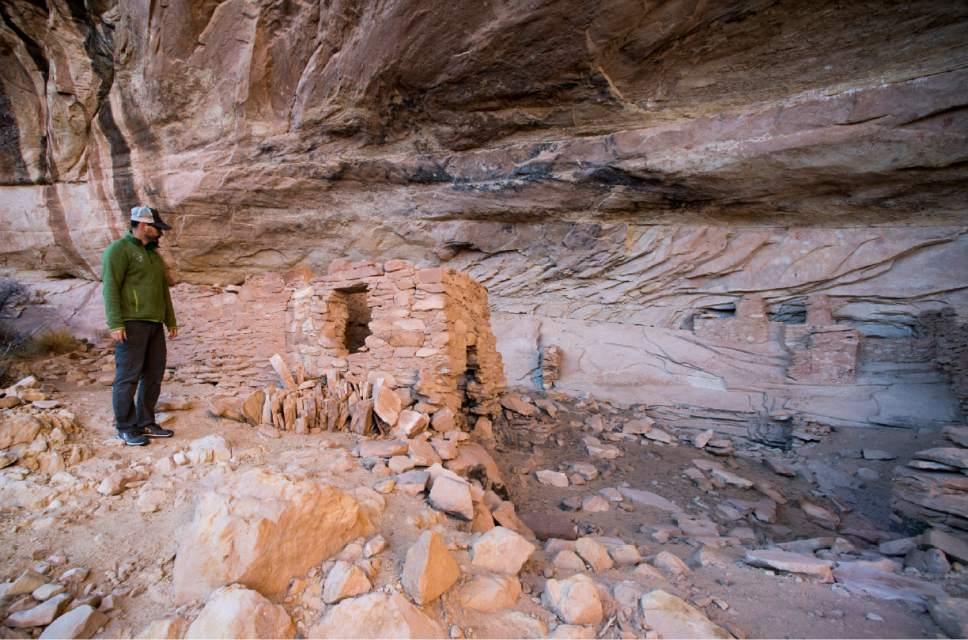 Rick Egan  |  The Salt Lake Tribune Friends of Cedar Mesa Executive Director Josh Ewing checks out an ancient cliff dwelling in the newly designated Bears Ears National Monument, near Bluff, Utah, on Thursday, December 29, 2016.