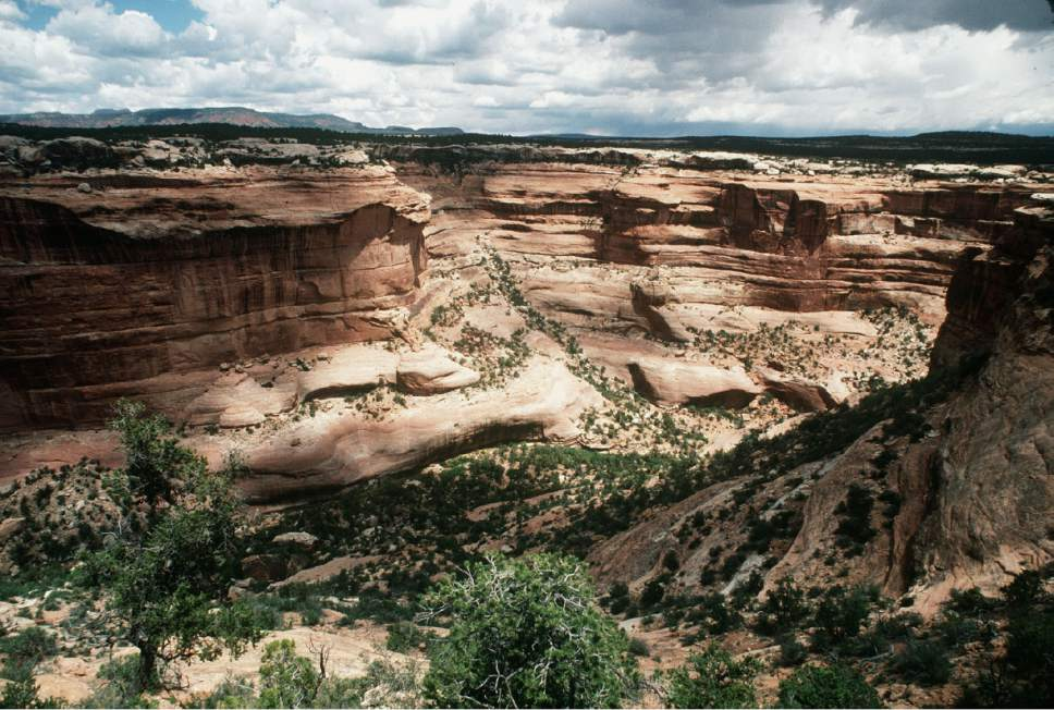 Al Hartmann  |  The Salt Lake Tribune Cedar Mesa's sandstone canyons are part of Bears Ears National Monument.