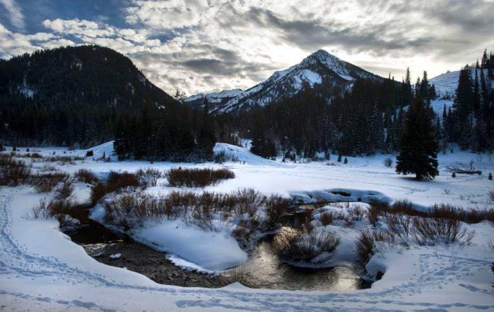 Steve Griffin / The Salt Lake Tribune   Big Cottonwood Creek flows through Big Cottonwood Canyon in Salt Lake City Tuesday December 20, 2016.
