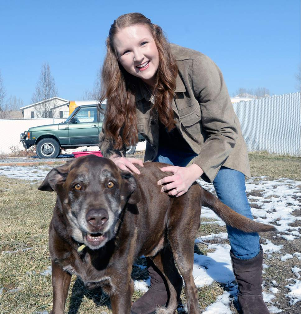 Al Hartmann  |  The Salt Lake Tribune  Hailey Allen plays with her dog Konrad at her home in Lehi.  She is one of about 30 people who wrote to BYU President Worthen about their concerns about the recent picks for Title IX coordinator and Victim Advocate.  She says she was raped while a student in 2004.