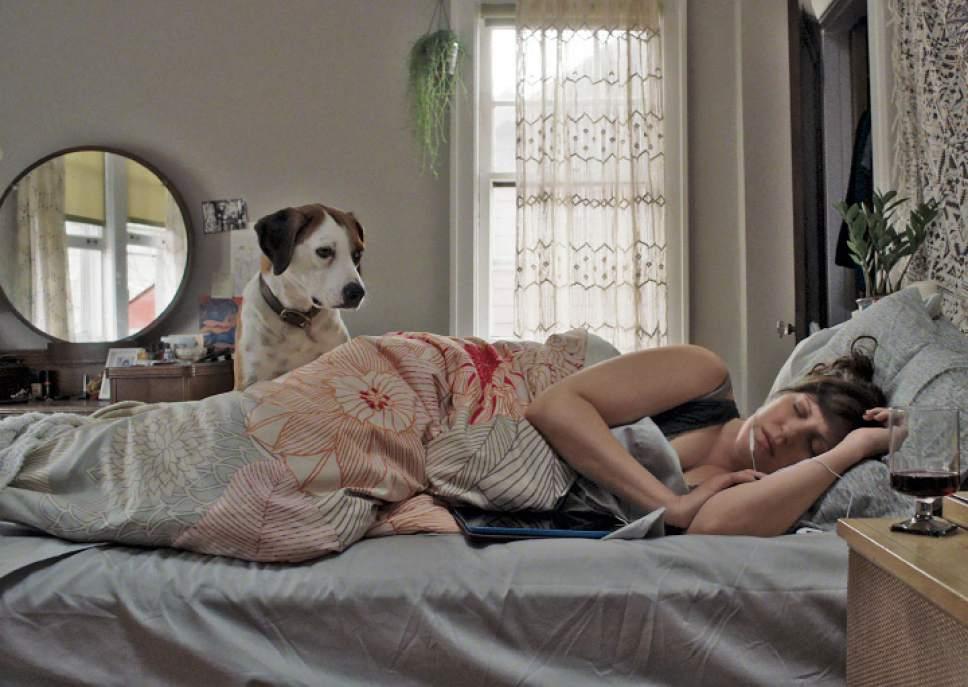 ìDownward Dogî stars Ned as Martin and Allison Tolman as Nan.   Craig Sjodin  |  ABC