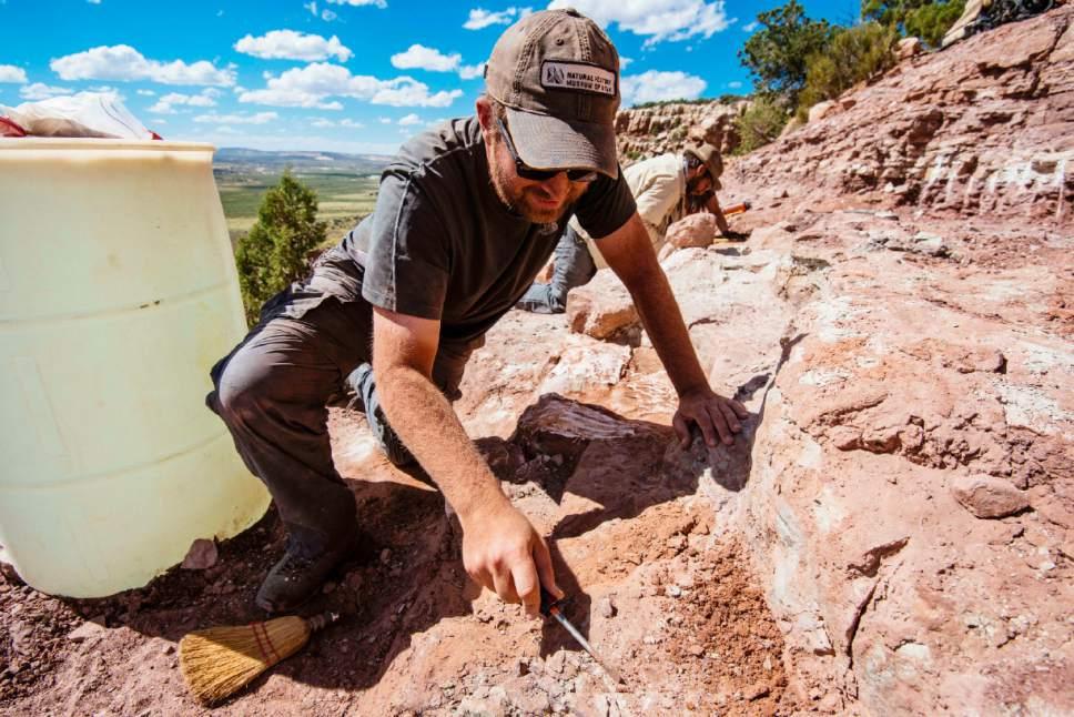Dinofest Natural History Museum Utah