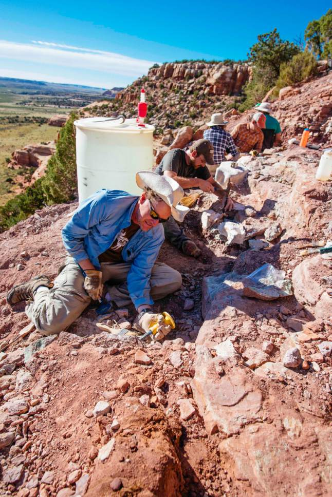 |  courtesy of Natural History Museum of Utah  Utah paleontologists John Foster (foreground) and Randy Irmis pick rock away from dinosaur bones at an excavation site in San Juan County's Lisbon Valley. Irmis and Foster are among 13 paleontologist who will discuss their Utah work at the Natural History Museum of Utah's DinoFest this weekend.