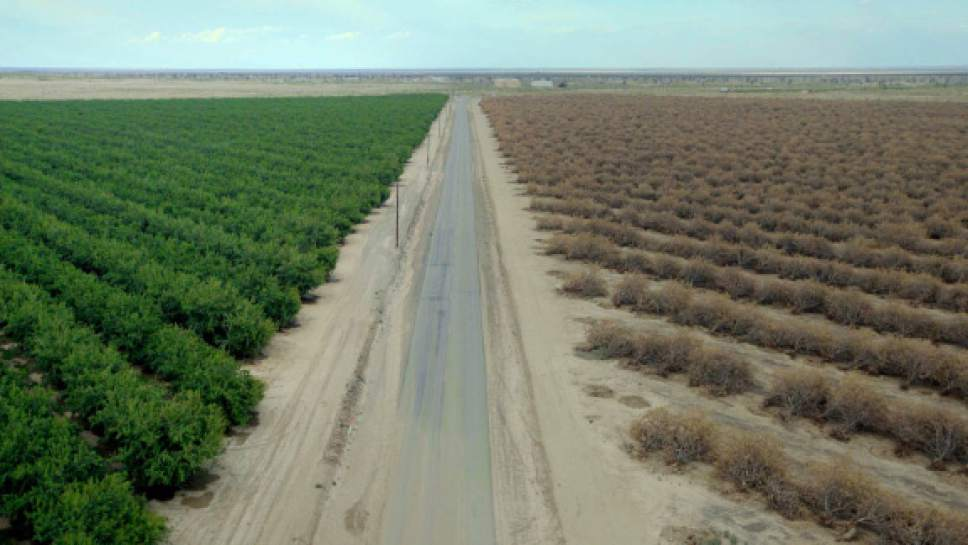 """A still from """"Water & Power: A California Heist"""" by Marina Zenovich, an official selection of the U.S. Documentary Competition at the 2017 Sundance Film Festival. Fresh Water Films/Bryan Harvey/Tim Gould  