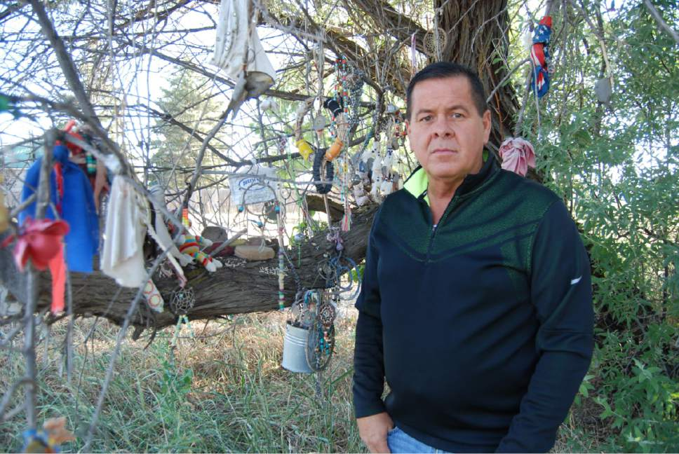 "Brian Maffly  |  The Salt Lake Tribune  Darren Parry, vice chairman for the Northwestern Band of Shoshone, is leading efforts to commemorate the site of the 1863 Bear River Massacre outside Preston, Idaho. He is pictured here beside a ""spirit tree"" on U.S. Highway 91 where people have hung offerings to honor Native Americans who died in what is believed to be the deadliest attack by U.S. soldiers during the West's Indian wars."