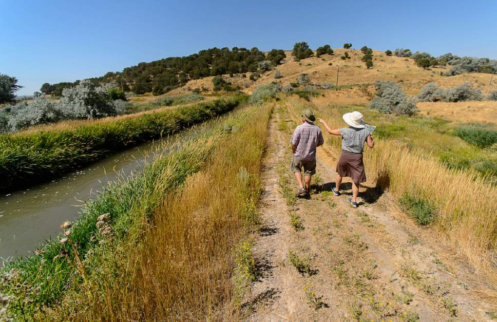 Trent Nelson  |  The Salt Lake Tribune Archaeologists Ken and Molly Cannon at the site of the Bear River Massacre in Franklin County, Idaho, Tuesday August 9, 2016. Research is underway to determine precise locations of the Shoshone village US soldiers wiped out in a surprise attack Jan. 29, 1863. Some 300 to 500 Indians died in the attack, making it the West's worst massacre yet the event is little known.