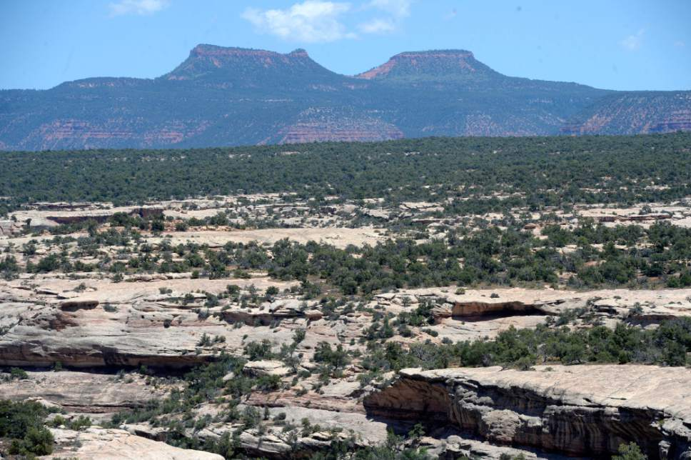 Al Hartmann  |   Tribune file photo Bears Ears formation rises above White Canyon along US Highway 95 near Natural Bridges National Monument in San Juan County.  The formation is at the heart of the newly designated  Bears Ears National Monument.