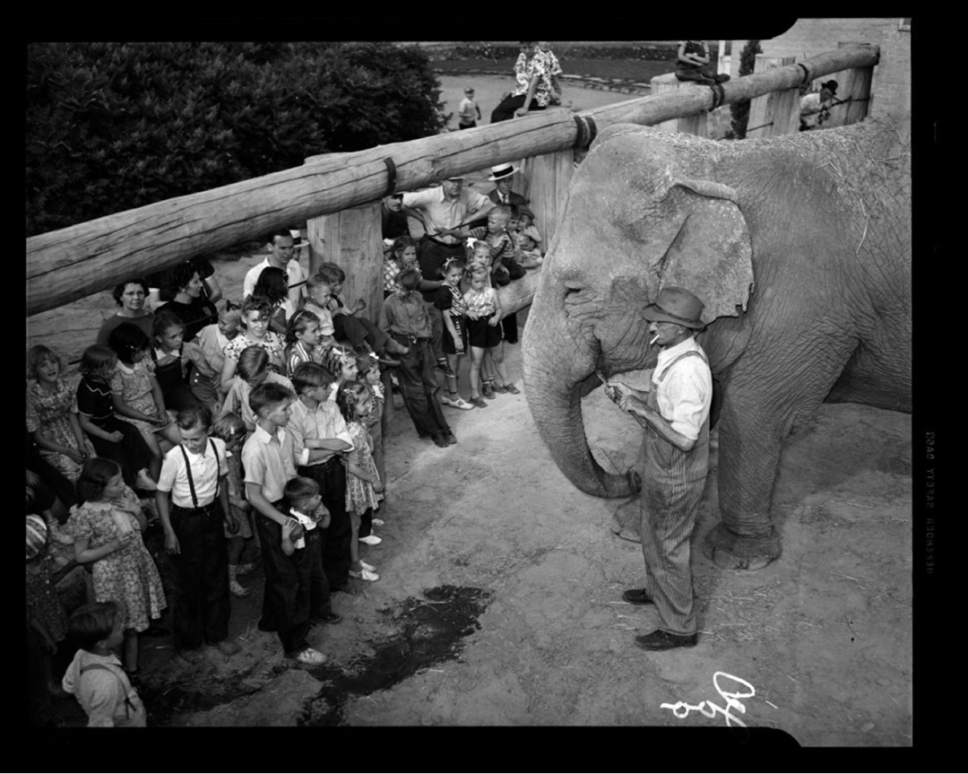 photo courtesy Utah Historical Society  Princess Alice at the Hogle Zoo in this undated photo. Note that the zookeeper is smoking and the children are inside the elephant enclosure.