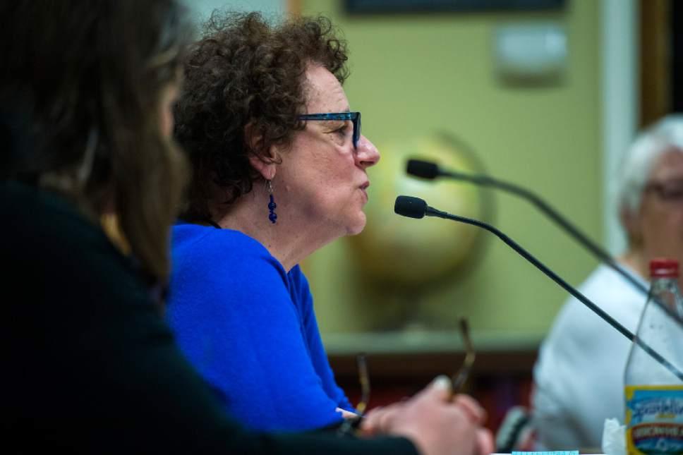 Chris Detrick     The Salt Lake Tribune School Board President Heather Bennett speaks during a meeting at Glendale Middle School Tuesday February 21, 2017.