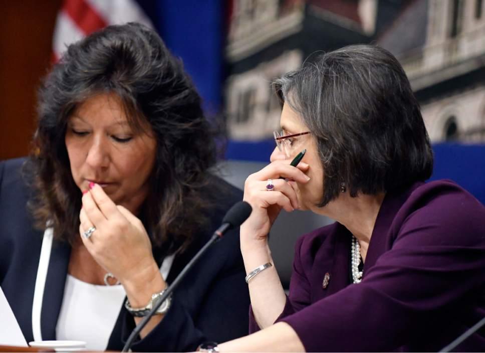 New York Sen. Susan Serino, R-Poughkeepsie, left, speaks with New York Assemblywoman Donna Lupardo, D-Binghamton during a joint legislative hearing on elder abuse prevention on Tuesday, Feb. 28, 2017, in Albany, N.Y. (AP Photo/Hans Pennink)