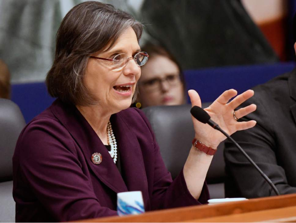 New York Assemblywoman Donna Lupardo, D-Binghamton, speaks during a joint legislative hearing  on Elder Abuse Prevention on Tuesday, Feb. 28, 2017, in Albany, N.Y. (AP Photo/Hans Pennink)