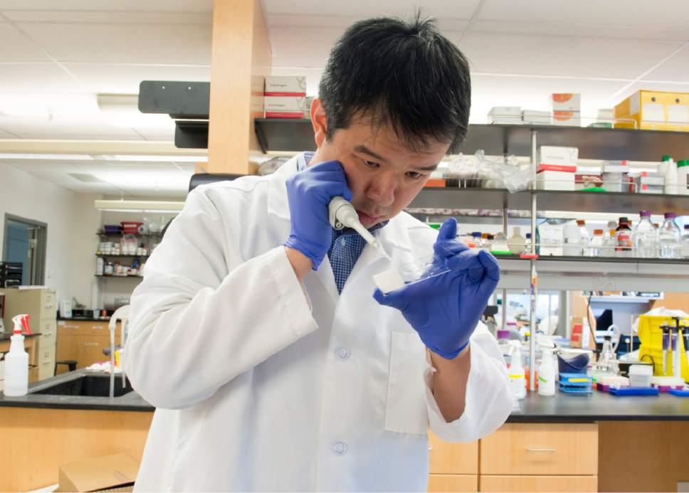 Rick Egan  |  The Salt Lake Tribune Wei-Chao Huang works in researcher Christopher Gregg's lab at the University of Utah. The team has explored brain cells that preferentially activate one parent's copy of a gene over the other.