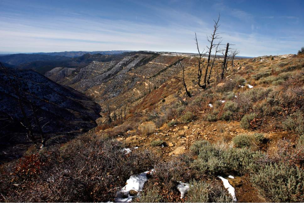Rick Egan   |  The Salt Lake Tribune   An overlook  in the Book Cliffs area in Uintah and Grand County.