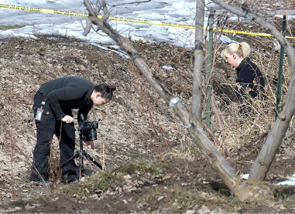 Investigators search for evidence where a missing girl was found in an irrigation ditch in Smithfield on Friday.