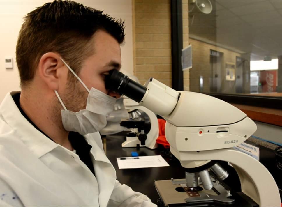 Rick Egan     The Salt Lake Tribune  Adam Yankee works as a serologist, testing rape kits, in the lab at the Utah Department of Public Safety Laboratory.  Thursday, January 26, 2017.