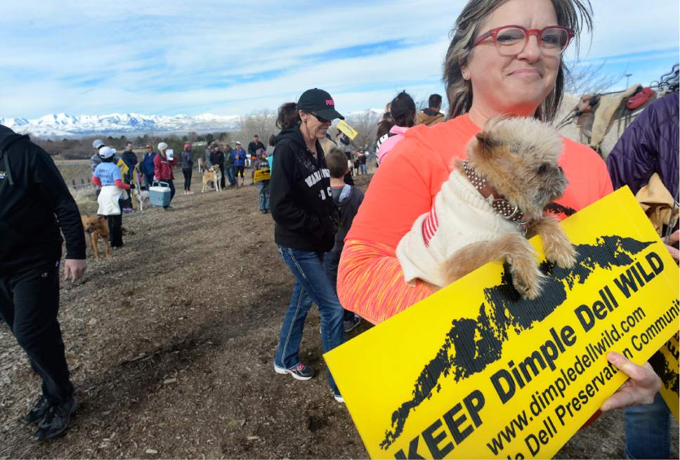 "Scott Sommerdorf |  Tribune file photo Monica Zoltanski and her dog ""Chewie"" walk during ""March For The Park!"" - an effort to work against a $4 Million 3-mile asphalt trail through Dimple Dell Regional Park in Sandy, Saturday, March 4, 2017. They are hiking east from the Wrangler Trailhead (10400 South 13000 East). The group had organized the event to support its petition effort and to inform park users of the unique characteristics found in Dimple Dell Park that it aims to preserve."