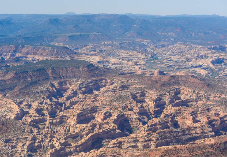 Francisco Kjolseth   Tribune file photo The Bears Ears, seen on the horizon, and its surrounding areas in southeastern Utah, are subject to a possible National Monument designation by President Obama   under the Antiquities Act for protection. EcoFlight recently flew journalists, tribal people and activists over the northern portion of the proposed 1.9 million acre site in an effort to push for permanent protection from impacts caused by resource extraction and high-impact public use.