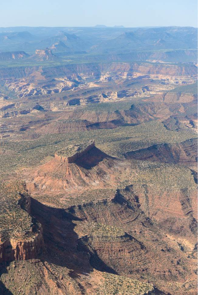 Francisco Kjolseth | Tribune file photo The Bears Ears, seen on the horizon, and its surrounding areas in southeastern Utah, are subject to a possible National Monument designation by President Obama   under the Antiquities Act for protection. EcoFlight recently flew journalists, tribal people and activists over the northern portion of the proposed 1.9 million acre site in an effort to push for permanent protection from impacts caused by resource extraction and high-impact public use.