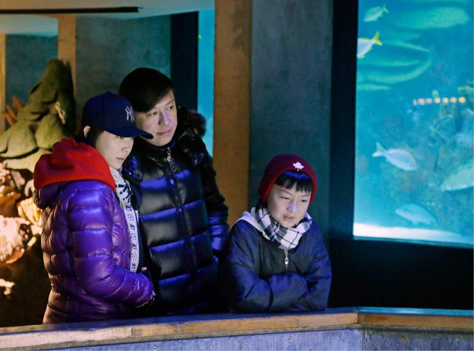 In this March 27, 2017, photo, tourists from China watch penguins at the New England Aquarium in Boston. In cities across the country, the American hospitality industry is stepping up efforts to make Chinese visitors feel more welcome. (AP Photo/Elise Amendola)