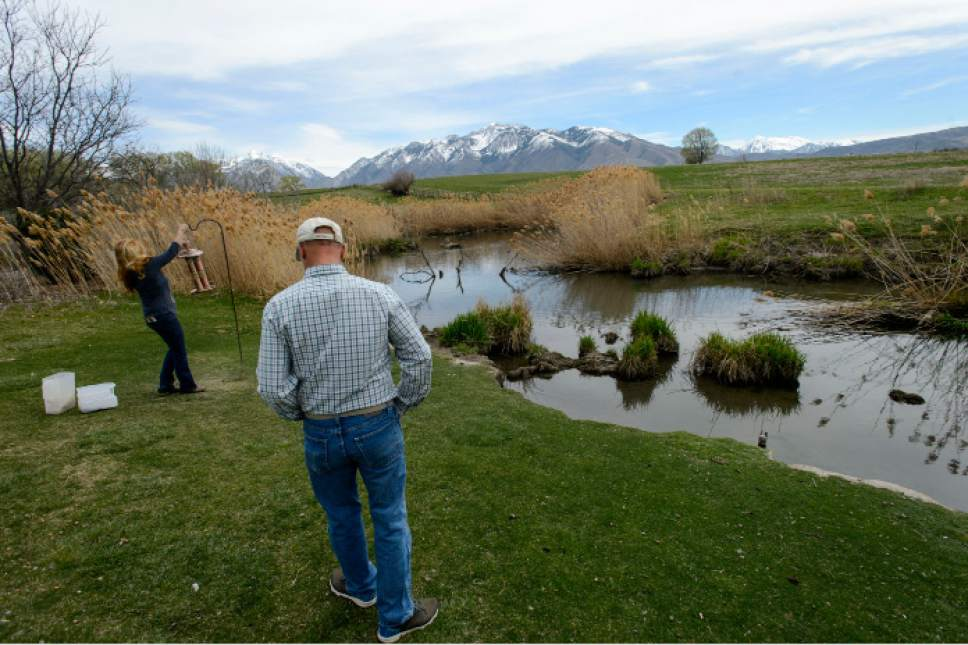 Steve Griffin  |  The Salt Lake Tribune  Kelly McAdams and his wife, Kris Burns, in the back yard of their Draper home on Thursday,April 6, 2017. Salt Lake County officials are pressuring residents to remove beaver dams from Big Willow Creek where the stream flows across their properties. They insist the dams have been there for years and should remain because they are natural and provide wetland habitat, but officials say they pose a flood hazard.