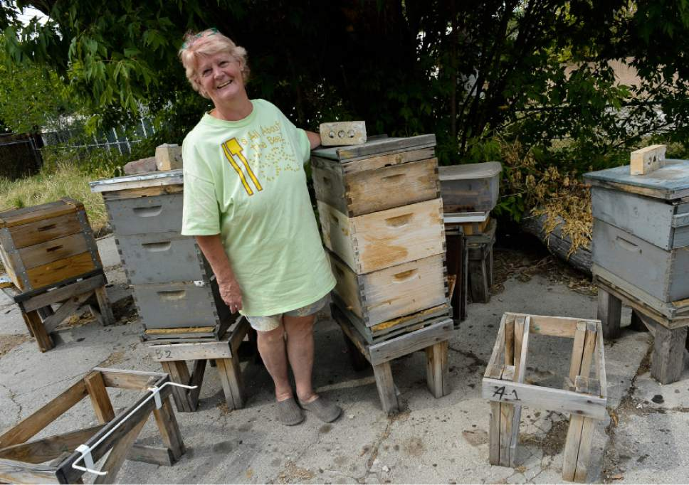 "Francisco Kjolseth  |  The Salt Lake Tribune Bee Keeper Denise Hunsaker, President of the Wasatch Bee Keepers Association is passionate about bees. It was five years ago that a friend got her interested and started her with her first hive. Since then her love has grown and she loves educating the public about the importance of the honey bee. "" One third of every bite we eat can be attributed to bee pollination""."