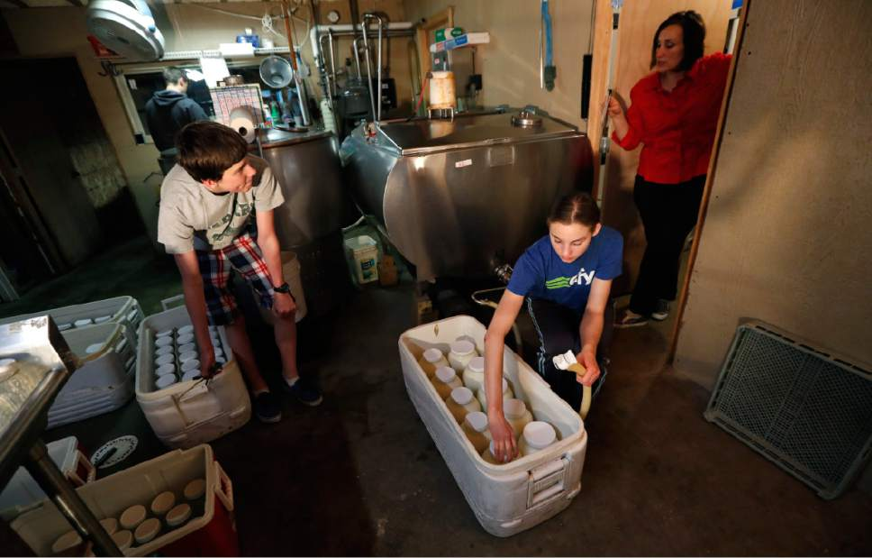 In this March 24, 2017 photo, Rachel Moser, right, bottles raw milk with her son Zachary, left, and daughter Myra, center, on her Be Whole Again Farm in Excelsior Springs, Mo. It is illegal to sell raw milk for human consumption in Delaware, Hawaii, Iowa, Louisiana, Montana, Nevada, New Jersey and Rhode Island but local food groups, organic farming advocates and libertarians opposing government regulation are fighting to change that. They have succeeded at legalizing raw milk sales in some form in 42 states and wont rest until all states allow it. (AP Photo/Charlie Neibergall)