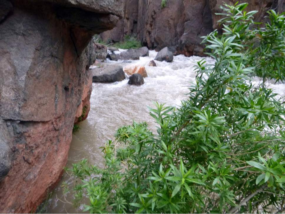 This Sunday, April 16, 2017, photo provided by the National Park Service shows Tapeats Creek in Grand Canyon National Park in Arizona. Authorities are searching for Jackson Standefer, 14, and Lou-Ann Merrell, 62, after the pair lost their footing Saturday and fell into the water during a family trip in a remote area of the Arizona park. (National Park Service via AP)