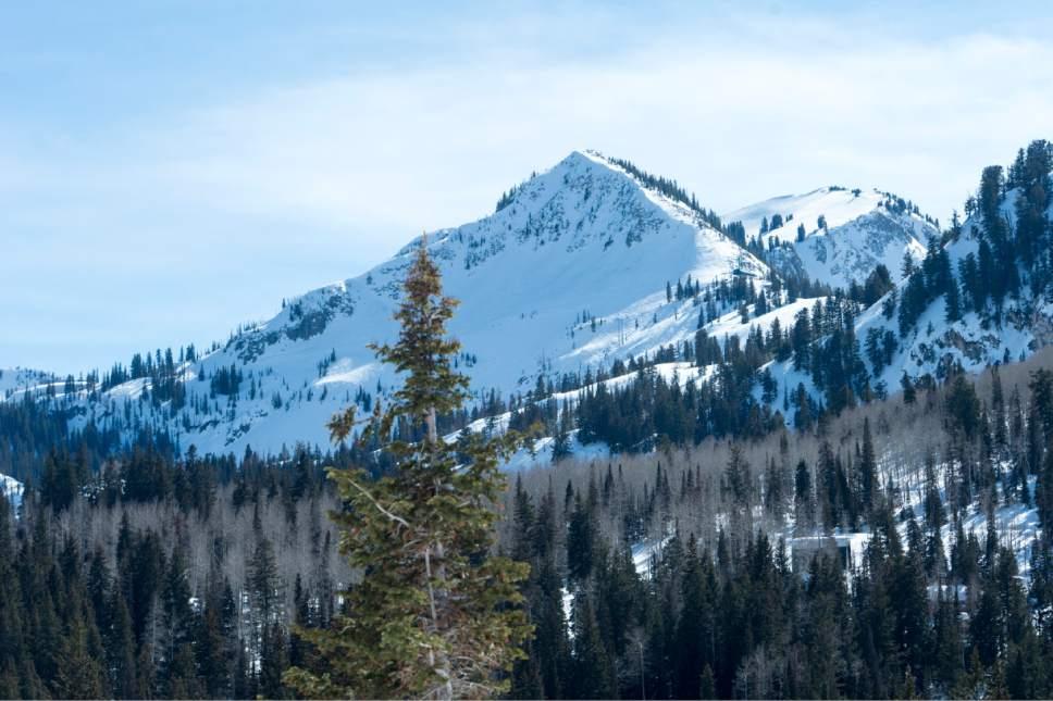 Rick Egan  |  The Salt Lake Tribune  Big Cottonwood Canyon, Monday, March 13, 2017.