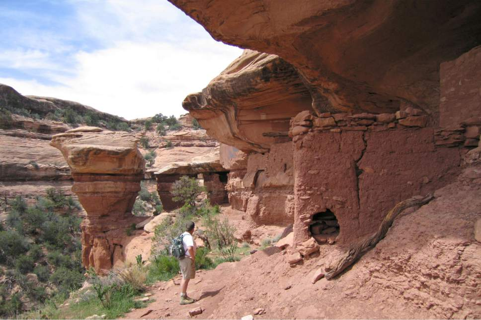 Al Hartmann  |  The Salt Lake Tribune  Backpacker explores an Anasazi ruin under a sandstone alcove in a canyon on Cedar Mesa in San Juan County.  The area is included for a proposed Bears Ears National Monument.