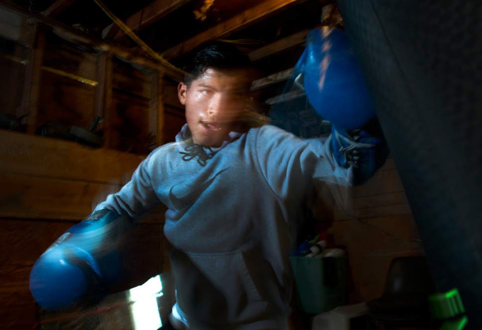 Leah Hogsten  |  The Salt Lake Tribune  Diego Alvarez, 17, of South Ogden, trains at the tiny Los Gallitos Boxing Club gym, Tuesday, April 18, 2017. Alvarez  hopes to win amateur boxing's 114-pound national title at the Golden Gloves championship for the second time this weekend in Lafayette, LA.