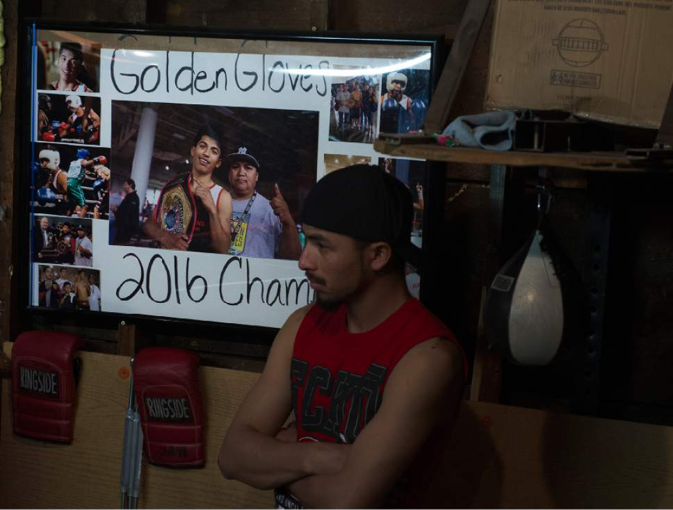 Leah Hogsten  |  The Salt Lake Tribune  Photographs of Diego Alvarez's 2016 Golden Gloves win with his trainer Lalo Lopez adorn the wall at the tiny Los Gallitos Boxing Club gym, Tuesday, April 18, 2017. Alvarez  hopes to win amateur boxing's 114-pound national title at the Golden Gloves championship for the second time this weekend in Lafayette, LA.