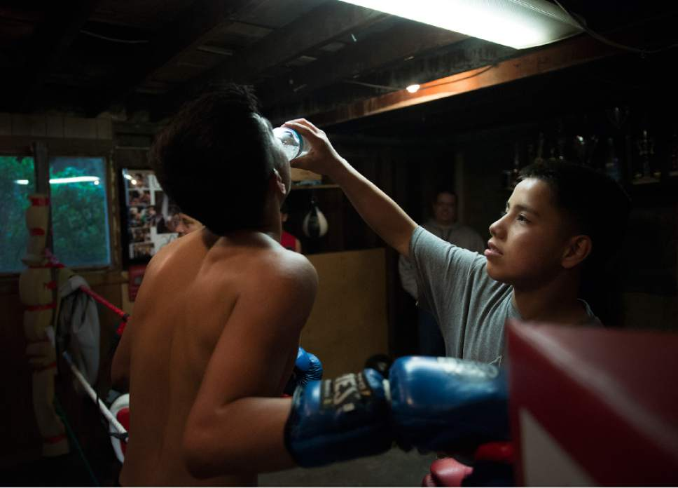 Leah Hogsten  |  The Salt Lake Tribune  Jayden Lopez , 14, gives Diego Alvarez, 17, of South Ogden, during a break from sparing with Lopez's father at the tiny Los Gallitos Boxing Club gym, Tuesday, April 18, 2017. Alvarez  hopes to win amateur boxing's 114-pound national title at the Golden Gloves championship for the second time this weekend in Lafayette, LA.