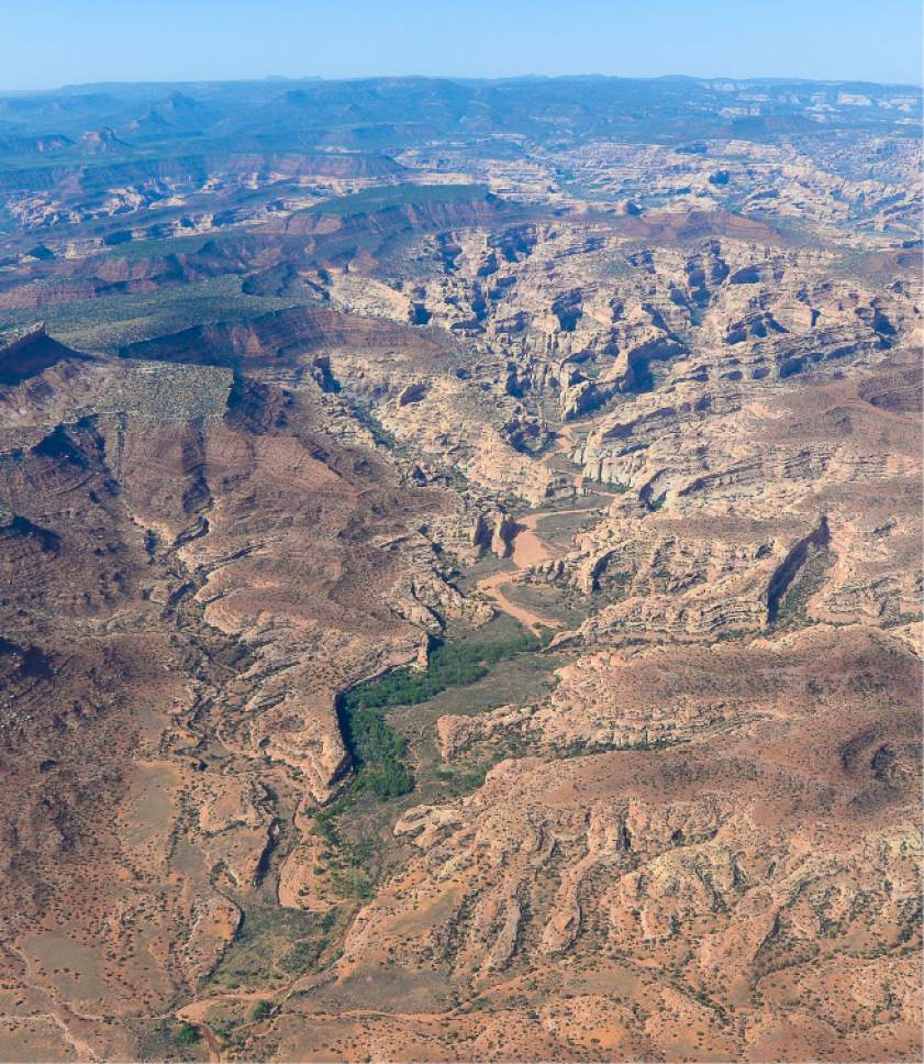 Francisco Kjolseth | The Salt Lake Tribune The Bears Ears, seen on the upper left horizon, and its surrounding areas in southeastern Utah, are subject to a possible National Monument designation by President Obama   under the Antiquities Act for protection. EcoFlight recently flew journalists, tribal people and activists over the northern portion of the proposed 1.9 million acre site in an effort to push for permanent protection from impacts caused by resource extraction and high-impact public use.