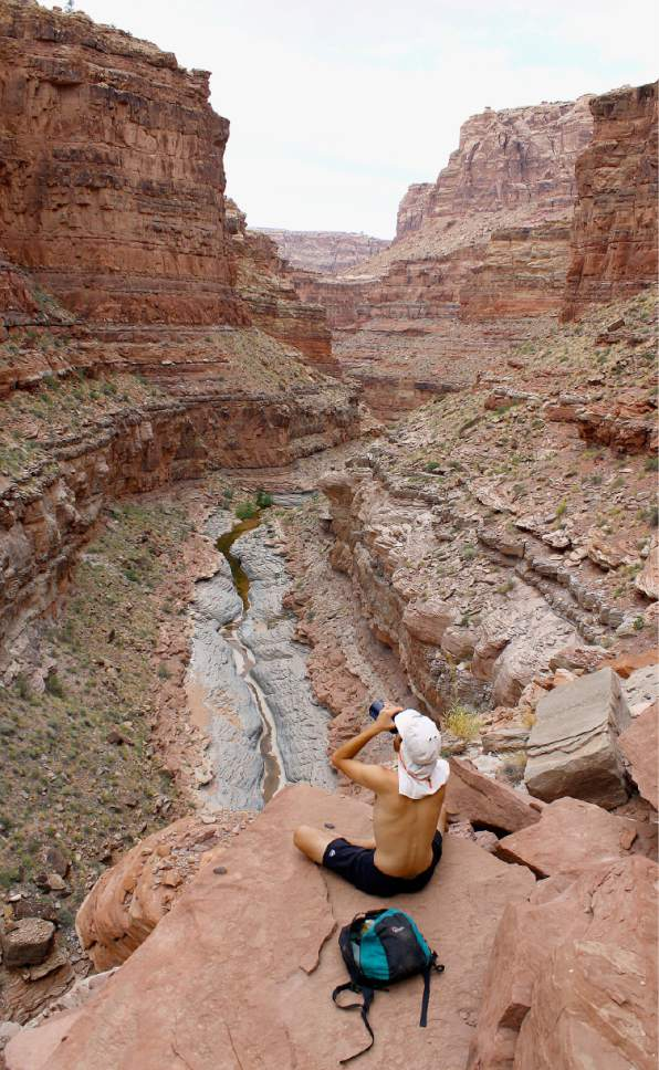 Al Hartmann     The Salt Lake Tribune  Hiker takes a break above the canyon floor in Dark Canyon Wilderness in San Juan County.  The area is included for a proposed Bears Ears National Monument.