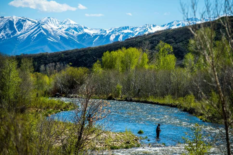 Ample snowpack has utah rivers set to flood the salt for Salt lake city fishing