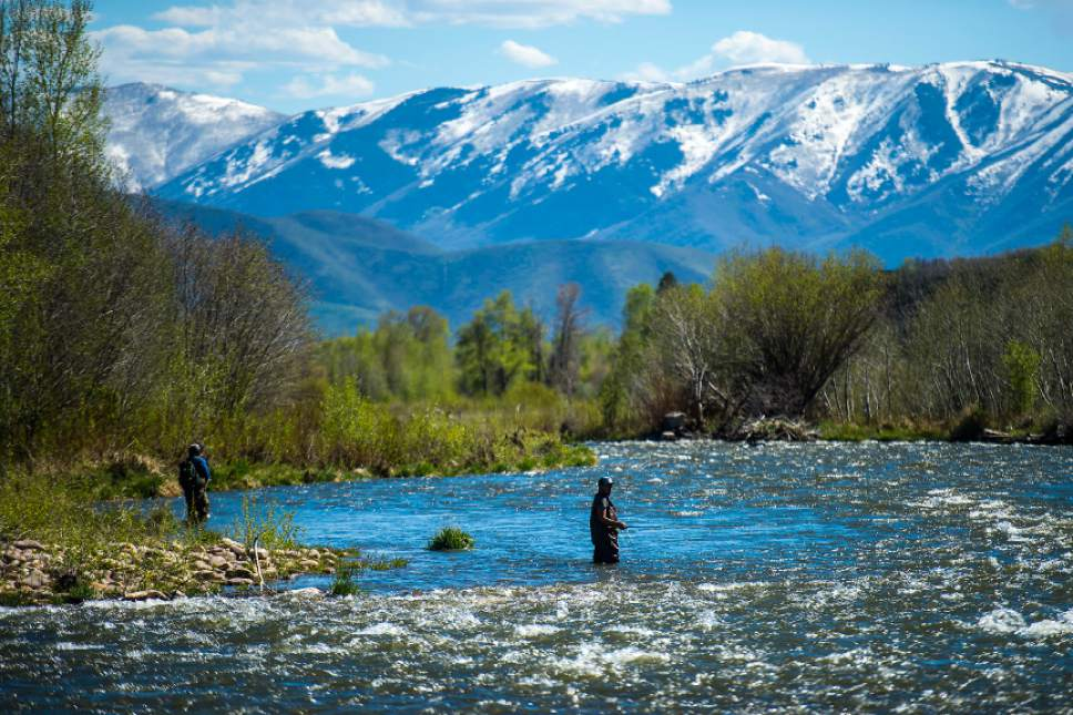 Chris Detrick     The Salt Lake Tribune Kevin Duron, right, and Luis Parriles, both of Orem, fish in the Provo River near Heber City Friday, May 5, 2017.