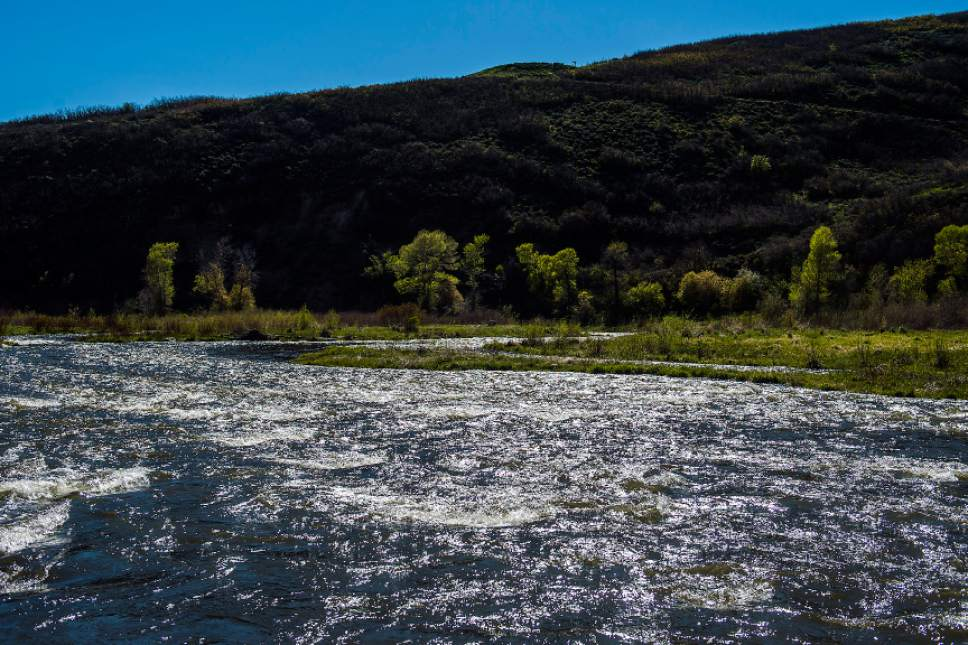 Chris Detrick    Tribune file photo The Provo River flows near Heber City in early May. Health officials are warning of elevated drowning dangers, especially for children, due to high seasonal spring runoffs and recent heavy rains.