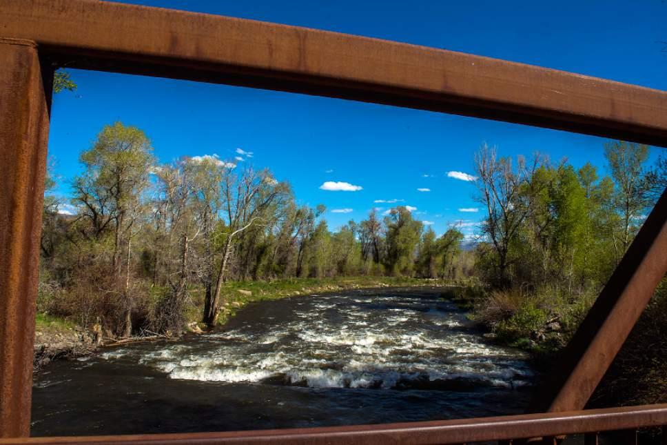 Chris Detrick     The Salt Lake Tribune The Provo River near Heber City Friday, May 5, 2017.