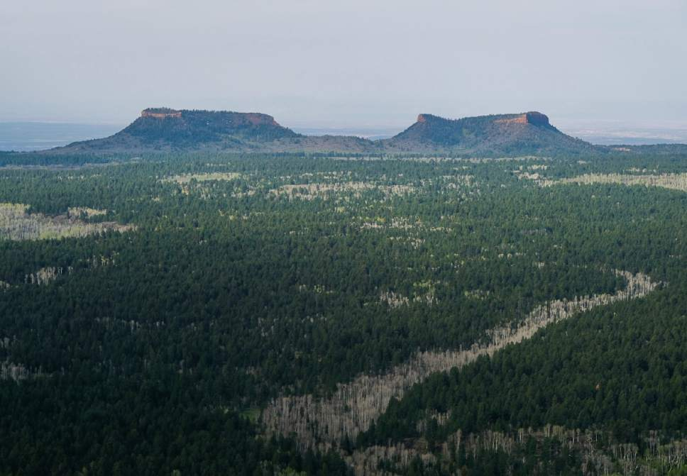 Francisco Kjolseth | Tribune file photo The two buttes that make up the namesake for the Bears Ears National Monument reveal the vast landscape surrounding them as part of the 1.35 million acres in southeastern Utah protected by President Barack Obama on Dec. 28, 2016. Utah Republicans in Congress are advocating for Trump to jettison UtahÌs national monument designation.