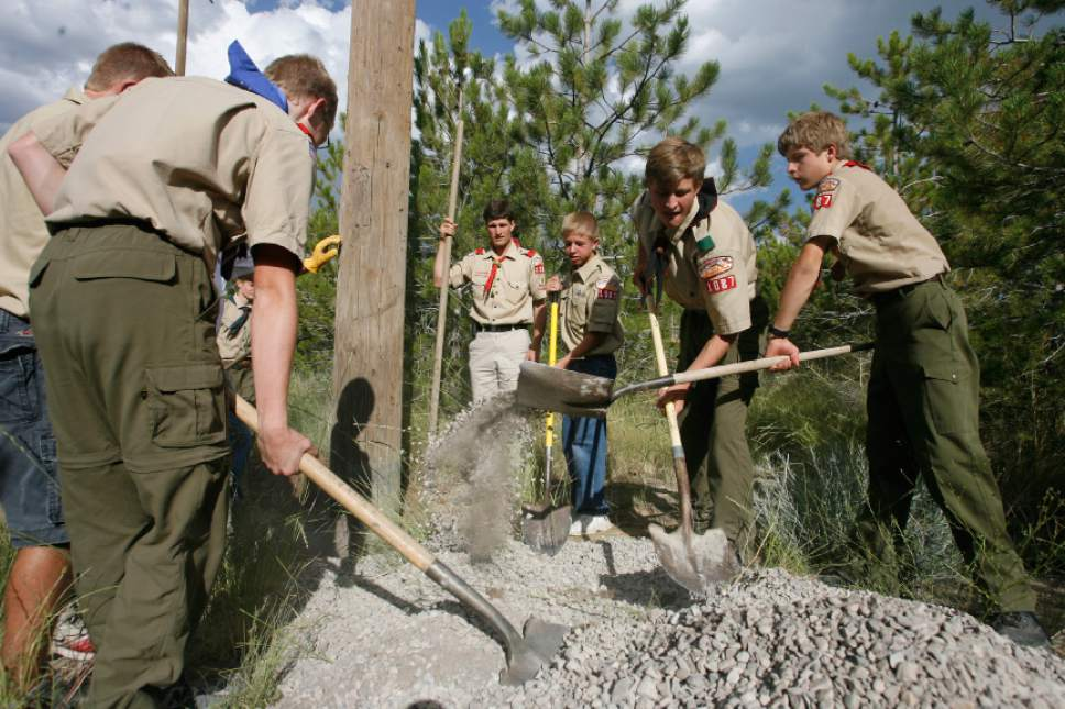 Image result for boy scouts of america community service
