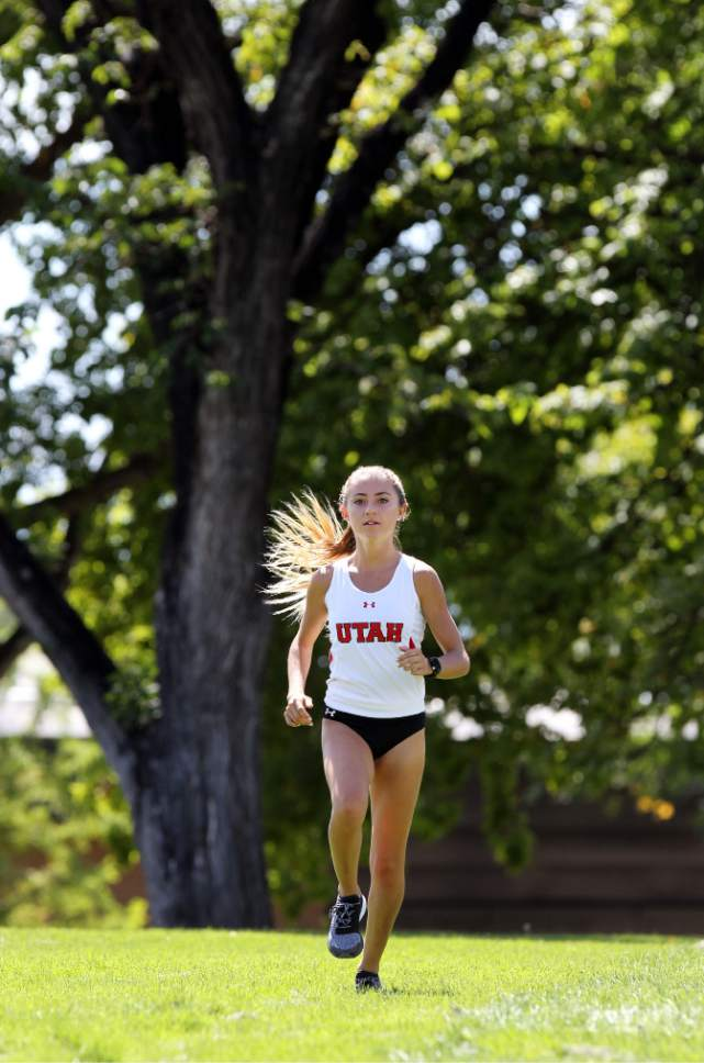 Steve C. Wilson     University of Utah   Utah junior Grayson Murphy runs at a cross country meet last fall. A West High alum, Murphy has become one of the top runners in the Utes' program, setting school records in the 3K steeplechase and the 5K.