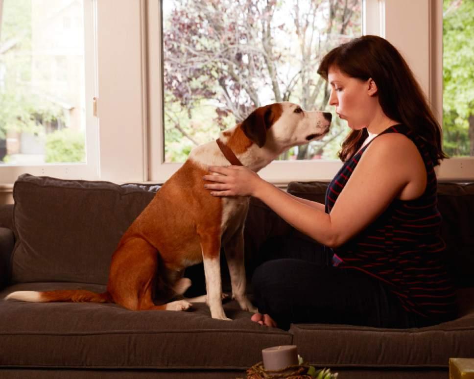 """Downward Dog"" stars Ned as Martin and Allison Tolman as Nan.   Craig Sjodin  |  ABC"